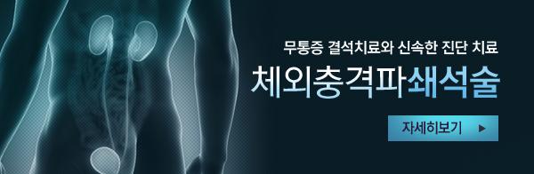 무통증 결석치료와 신속한 진단 치료 체외충격파쇄석술 자세히 보기